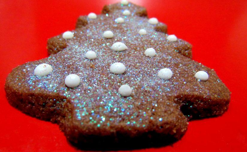 Biscoitos de Natal! Biscoitinhos deliciosos de chocolate, canela e noz moscada.